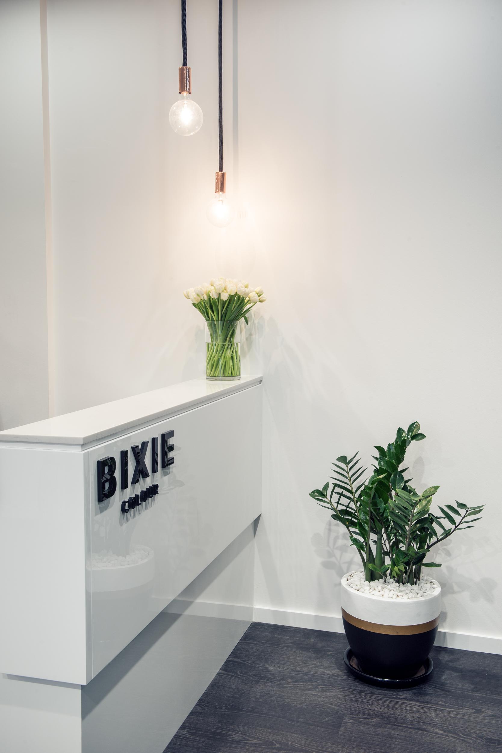 Bixie LRes-22